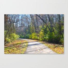 Bike Path Canvas Print
