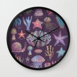 Sea life specimens, natural history poster  Wall Clock
