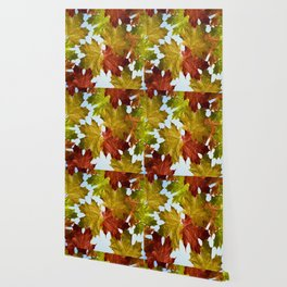 Autumn Leaf Brite Wallpaper