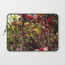 Red Ti Tropical Gardens Hawaiian ti plant Wailua Maui Hawaii Laptop Sleeve