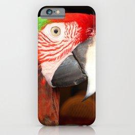 A Beautiful Bird Harlequin Macaw Portrait iPhone Case