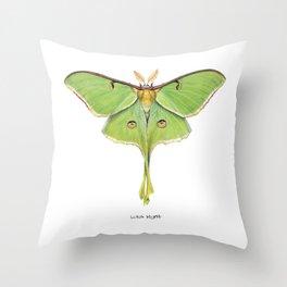 Luna Moth (Actias luna) II Throw Pillow