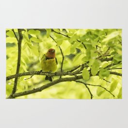Male Western Tanager, No. 2 Rug