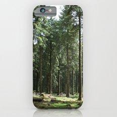 Dartmoor woods iPhone 6s Slim Case