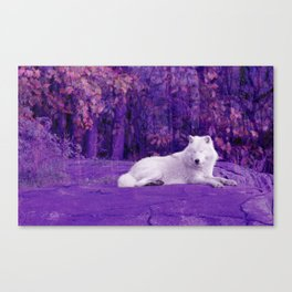 Dreaming Of Another World Canvas Print