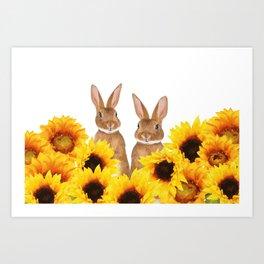 Two Rabbits Sunflower field Art Print