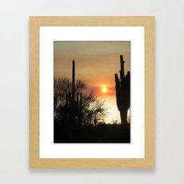 Sagauro Sunset  Framed Art Print