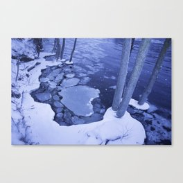 Water And Ice Surround Young Trees Canvas Print