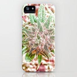 Flower Star Blooming Bud Indoor Hydro Grow Room Top Shelf iPhone Case