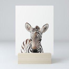 Zebra Foal Mini Art Print