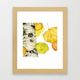 Falling Aspen Leaves Framed Art Print