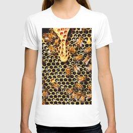 Sweet Honey Harvest T-shirt