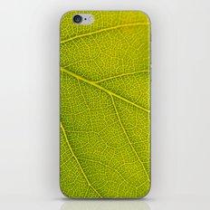 Green Highways iPhone & iPod Skin