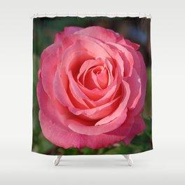 'Cherish' Rose Shower Curtain
