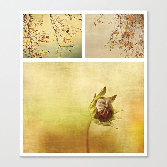 Triptych ~ Seasons Canvas Print