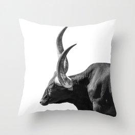 Ankole-Watusi | Animal Photography Throw Pillow