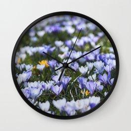 Crocus-meadow Wall Clock