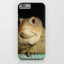 A Common Toad With Philosophical Disposition iPhone Case