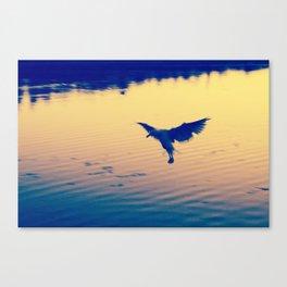 I Love You Seagull Canvas Print