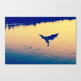 I Love You Seagull Canvas Print