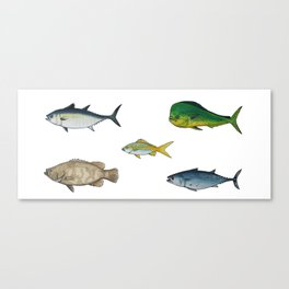 game fish Canvas Print