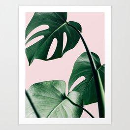 Plant, Green, Monstera, Leaf, Pink, Minimal, Trendy decor, Interior, Wall art, Photo Art Print Art Print