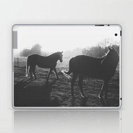 Two horses Laptop & iPad Skin