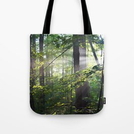 Cabin Light Tote Bag