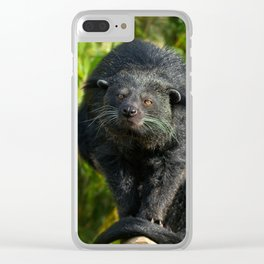 Binturong Looking At You Clear iPhone Case