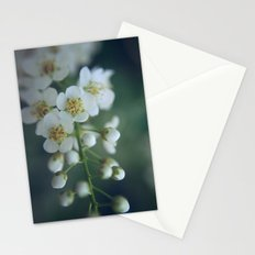 macro Stationery Cards