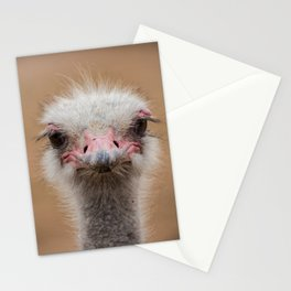 Common Ostrich portrait Stationery Cards