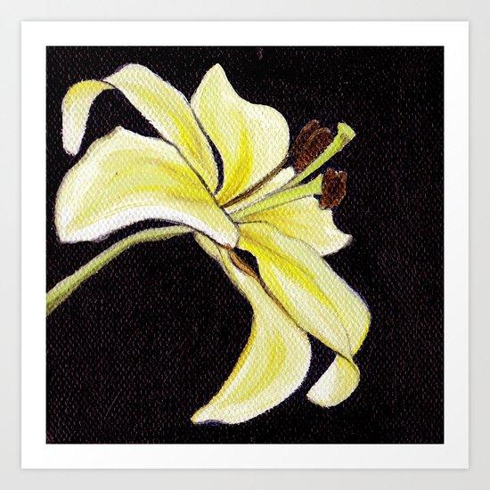 Small Lily Art Print