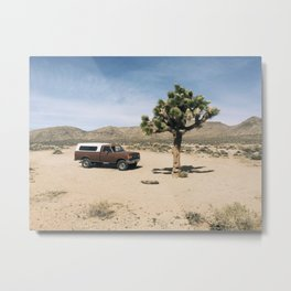 Joshua Tree in Death Valley  Metal Print