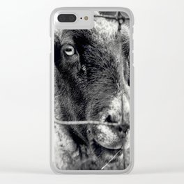Sheep 3 Clear iPhone Case