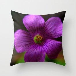 Azedinha Flower Throw Pillow