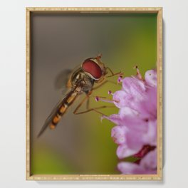Marmalade hoverfly Serving Tray