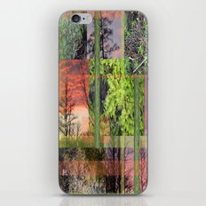 Trees & Moss iPhone & iPod Skin