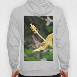 Hibiscus and Visitor Hoody