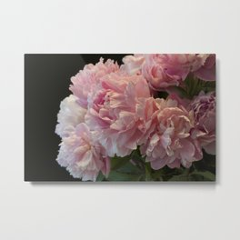 Pink Peony Passion Metal Print