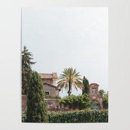 Roman Foliage Poster