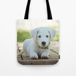 Poppy | Chiot Tote Bag
