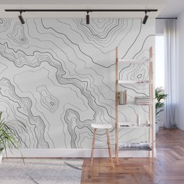Topography map Wall Mural