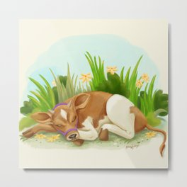 Sleepy Cow Metal Print