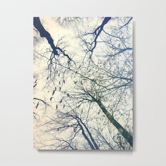 The Sky Above Metal Print