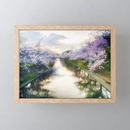 Cherry Blossom Japan Framed Mini Art Print