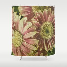 little gerberas Shower Curtain