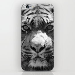 The eye of the tiger II (vintage) iPhone Skin