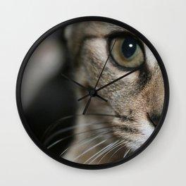 Eye of a Tiger... Wall Clock
