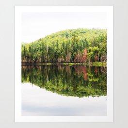 LakeScape Art Print