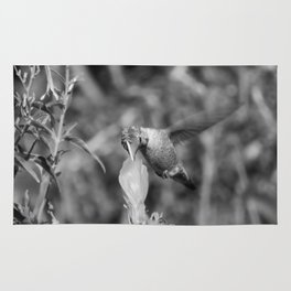 Hummingbird and the Flower- Black and White Rug